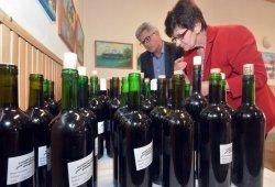 2018.04.14. - Alsógallai bor- és pogácsaverseny